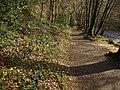 Riverside bridleway - geograph.org.uk - 1199990.jpg
