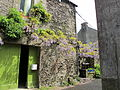 Rochefort-en-Terre - maisons 08.JPG