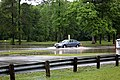 Roman Forest Flood - 4-18-16 (26511909545).jpg