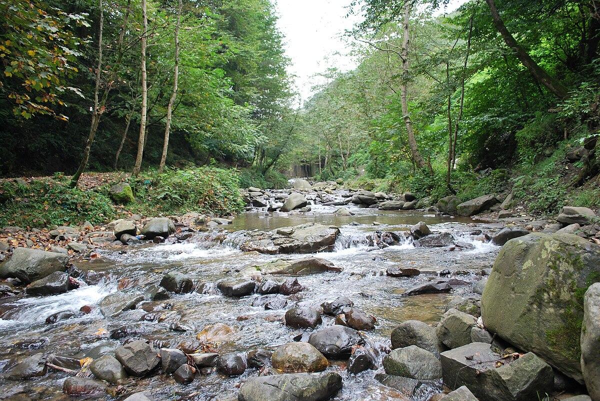اگر رودخانه در مسیر خود به طور ناگهانی دچار اختلاف ارتفاع شود چه چیزی ایجاد میگردد