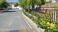 Rosales de la entrada al pueblo desde Alcudia, Benitagla.jpg