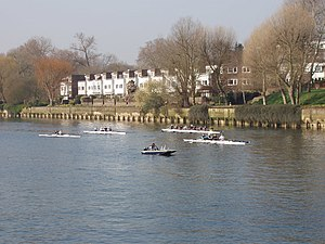 English: Rowing training on the Thames at Bren...