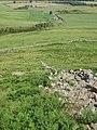 Ruined dyke, Yeavering Bell - geograph.org.uk - 1381780.jpg