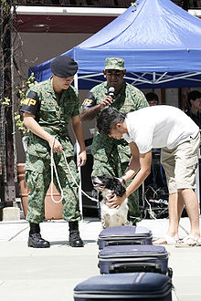 Singapore Armed Forces Military Police Command - Wikipedia, the ...