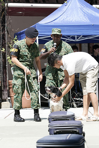 Singapore Armed Forces Military Police Command - SAF MP Command's Dog Unit performing a demonstration of their sniffer dogs' capabilities at Temasek Polytechnic.