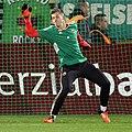 SV Mattersburg vs. SK Rapid Wien 2015-11-21 (087).jpg