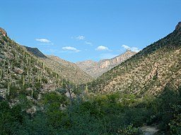 Sabino Canyon, La Paz County