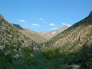 Sabino Canyon a significant canyon located in the Santa Catalina Mountains and the Coronado National Forest
