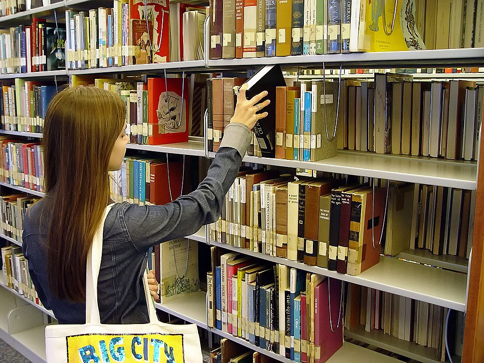 SanDiegoCityCollegeLearningResource - bookshelf
