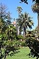 Santa Clara, CA USA - Santa Clara University - panoramio (18).jpg