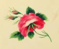 Sarah Mapps Douglass flower Cassey-album-p-9764-p9 lg crop.png