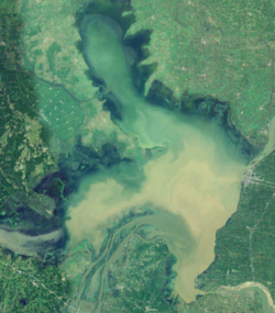 Satellite view Hongze Lake.png