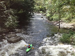 Savage River (Maryland) - Savage River, 1000 cfs dam release.