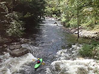 Savage River (Maryland) - Savage River, 1000 cfs dam release.