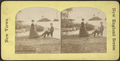 Scene on Lake George, from Robert N. Dennis collection of stereoscopic views 4.png