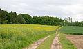 Schieder-Schwalenberg - 2015-05-29 - LSG-4020-0026 (5).jpg