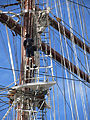 Sea Cloud - Valletta C IMG 0462.JPG