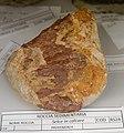 Selce in calcare - Collezione mineralogica - Università dell'Insubria.jpg