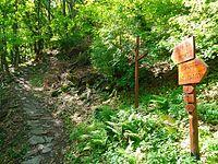 Il sentiero da Chiusa di San Michele alla sacra di San Michele