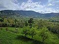 Shabora hills ajmera battagram.jpg
