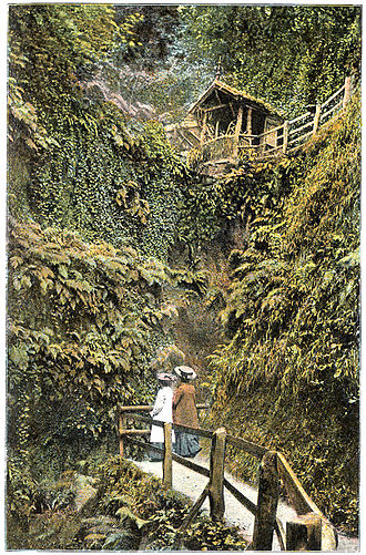 Chine - Shanklin Chine, circa 1910.