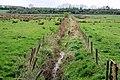 Sheugh, Portadown - geograph.org.uk - 1829752.jpg