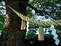 Shimenawa - Meiji Shrine.jpg