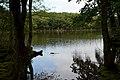 Shiretoko Goko Lakes Yonko02n.jpg