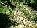Shishigase, Takashima, Shiga Prefecture 520-1142, Japan - panoramio - yokoyokoi (12).jpg