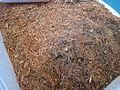 Shredded coconutfibres for plants PNr°0093.jpg
