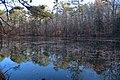Sibley Pond, Sope Creek Trail, December 2019 02.jpg