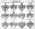 Siebmacher 1701-1705 E208.jpg