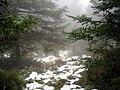 Sierra de las Nieves (3220641271).jpg
