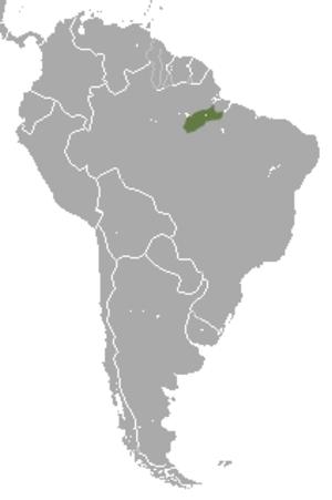 Silvery marmoset - Image: Silvery Marmoset area