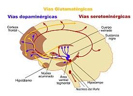 Diario De Una Esquizofrenica Pdf Download