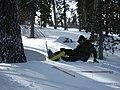 Skiing mishap - panoramio.jpg