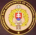 Slovakia army P899.jpg