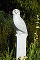 Snowy Owl By Paul Harvey (2872992938).jpg