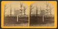 Soldiers' cemetery, Arlington, by Kilburn Brothers.png
