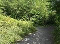 South Downs Way - geograph.org.uk - 519684.jpg