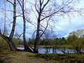 Sovetskiy rayon, Krasnoyarsk, Krasnoyarskiy kray, Russia - panoramio (12).jpg