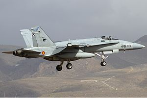 Spanish Air Force McDonnell Douglas EF-18A Hornet Lofting.jpg