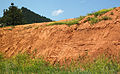 Spearfish Formation redbeds (Permian and-or Triassic; construction cut in Sundance, Wyoming, USA) 2 (18805493793).jpg