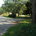 Spring Hill Historic District 02.jpg