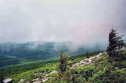 The summit of Spruce Knob is often covered in clouds. Spruce Knob.jpg