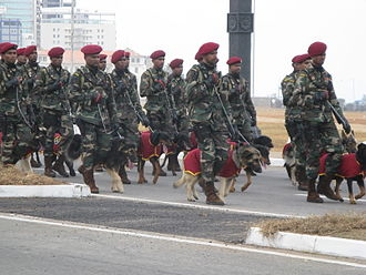 Sri Lanka Army Commando Regiment - Sri Lanka Army Commando K9 Unit