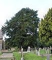 St Briget's Church - Eglwys y Santes Ffraid, Dyserth, Sir Ddinbych, Denbighshire, Wales 22.jpg