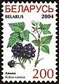 Stamp of Belarus - 2004 - Colnect 281048 - Blackberries - Rubus caesius.jpeg