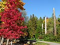 Stanley Park (Inner Harbor) Scene - Vancouver - BC - Canada - 06 (37967362522) (2).jpg