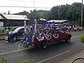 Starr-030705-0022-Cordyline fruticosa-July 4 Parade-Makawao-Maui (24008841524).jpg